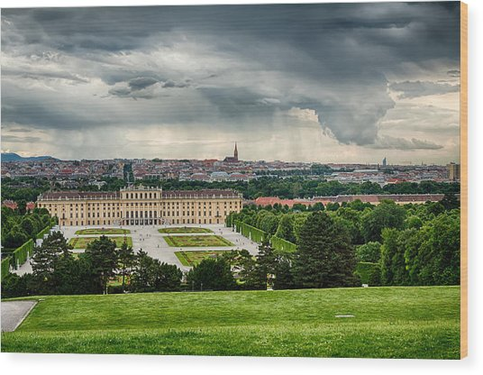 Storm Over Vienna Wood Print by Viacheslav Savitskiy