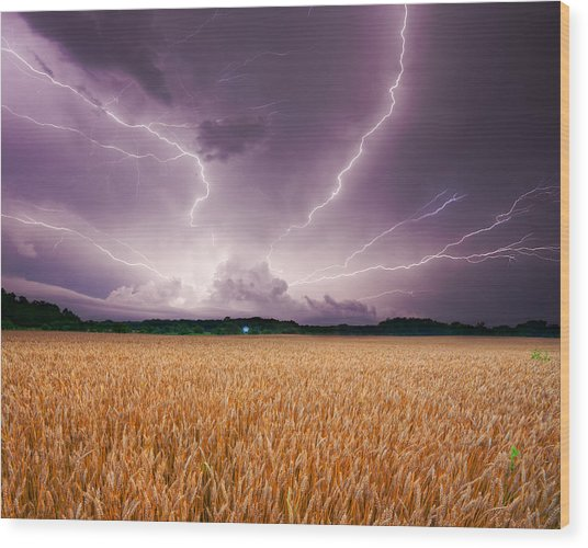 Storm Over Wheat Wood Print