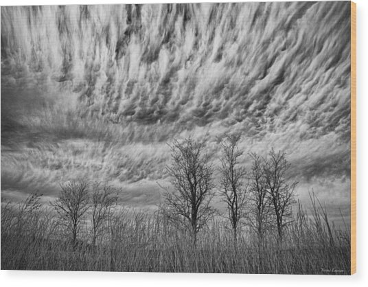 Storms To Come Wood Print