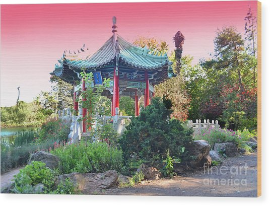 Stow Lake Pagoda In Golden Gate Park In San Francisco Wood Print by Jim Fitzpatrick