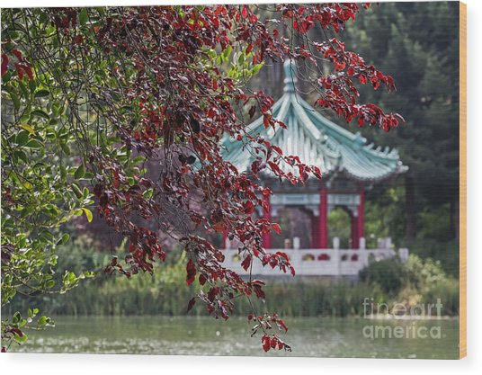 Stow Lake Pavilion Wood Print