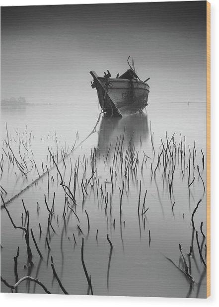 Stranded Again Wood Print by Razali Ahmad