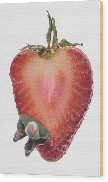 Strawberry Seat Wood Print