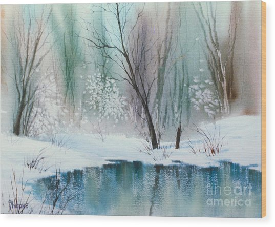Stream Cove In Winter Wood Print
