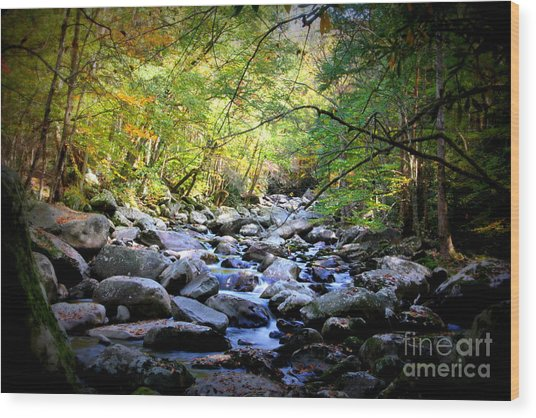 Rocky Stream In The Smokies Wood Print