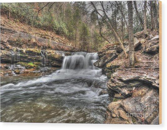 Stream Near Thurmond Wv Wood Print by Dan Friend