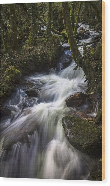Stream On Eume River Galicia Spain Wood Print