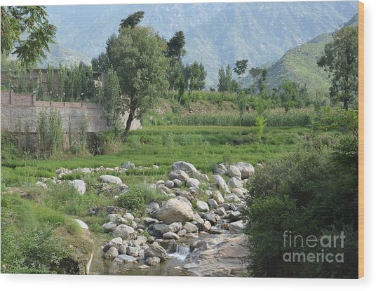 Stream Trees House And Mountains Swat Valley Pakistan Wood Print