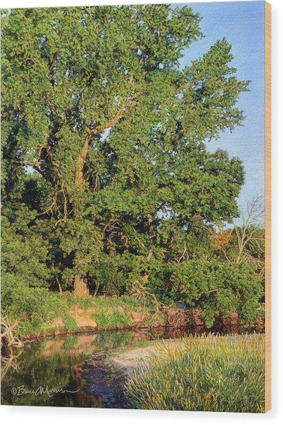 Streamside Cottonwood Wood Print