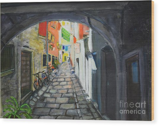 Street View 2 From Pula Wood Print
