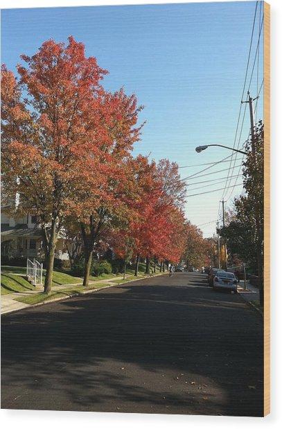 Street View Staten Island Wood Print