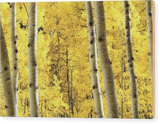 Striking It Rich Wood Print