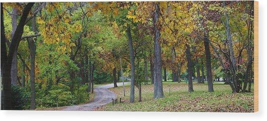 Stroll Through The Park Wood Print