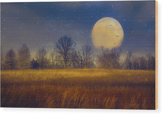 Struck By The Moon Wood Print