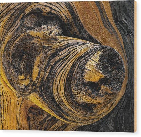 Stump Lump And Bump Wood Print