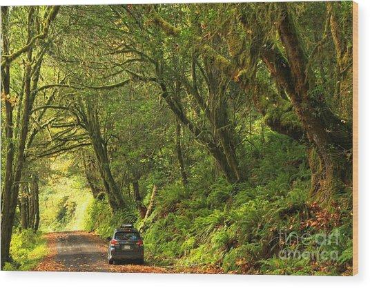 Subaru In The Rainforest Wood Print
