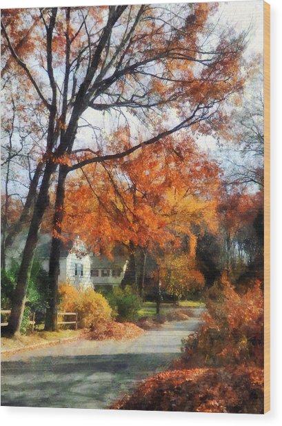 Suburban Street In Autumn Wood Print by Susan Savad