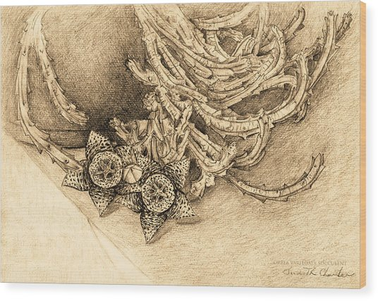 Succulent Flowers Wood Print