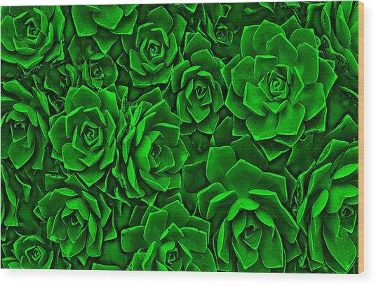 Succulent Green Wood Print