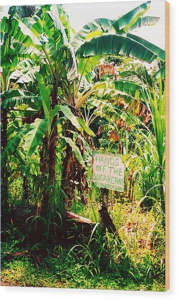 Sugarcane Wood Print
