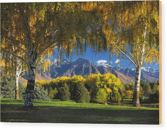 Sugarhouse Park Salt Lake City Ut Wood Print