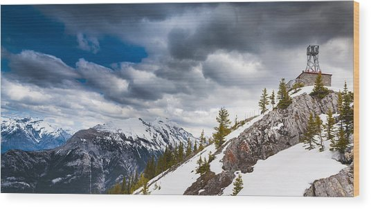 Sulphur Mountain Up High Wood Print by Chris Halford