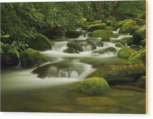 Summer Along The Roaring Fork Wood Print by Keith Nicodemus