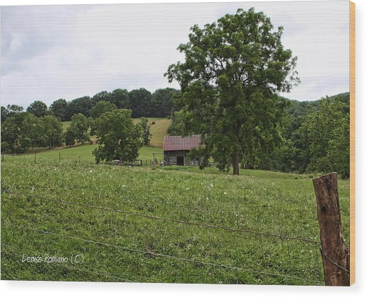 Summer Barn Wood Print