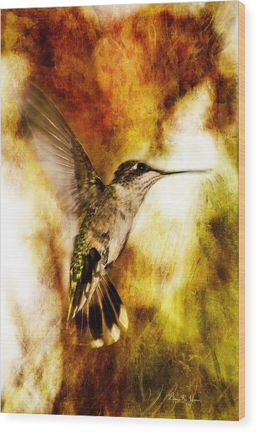 Hummingbird - In Flight - Summer Beauty Wood Print by Barry Jones