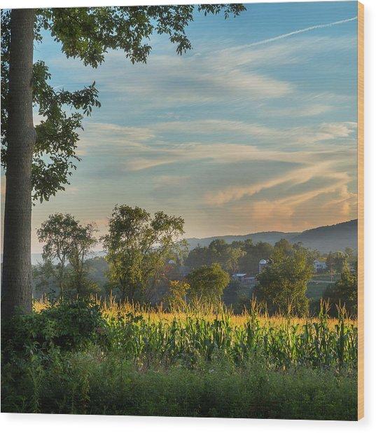 Summer Corn Square Wood Print