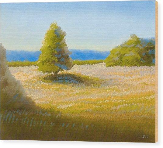 Summer Field Wood Print by Bruce Richardson