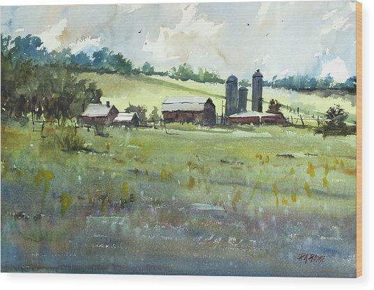 Summer Fields Wood Print