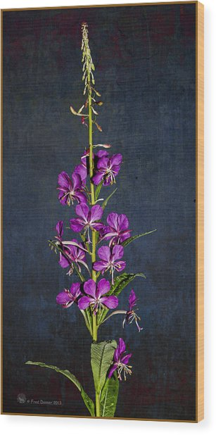 Summer Fireweed Wood Print