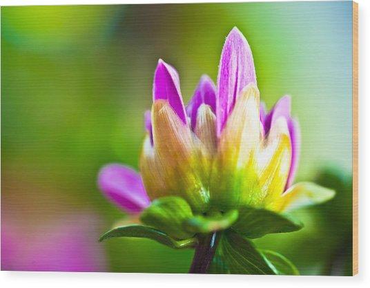 Summer Fleur Wood Print