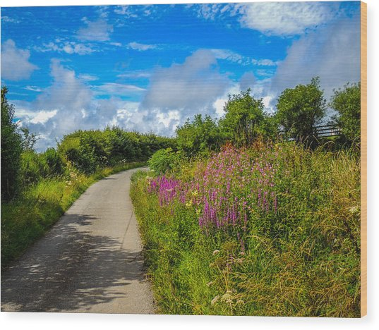 Summer Flowers On Irish Country Road Wood Print