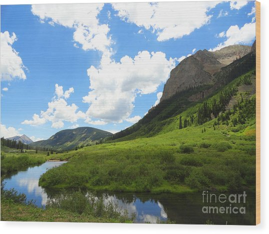 Summer In Crested Butte Wood Print