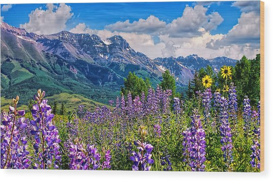 Summer In Telluride Wood Print