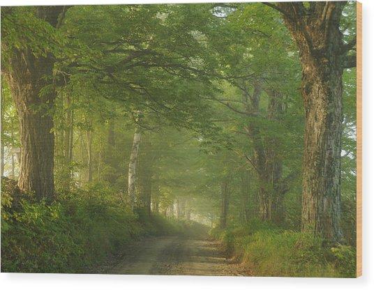Summer Morning, Cory Hill Road Wood Print