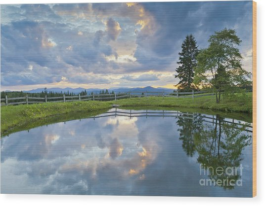 Summer Pond Reflection Wood Print