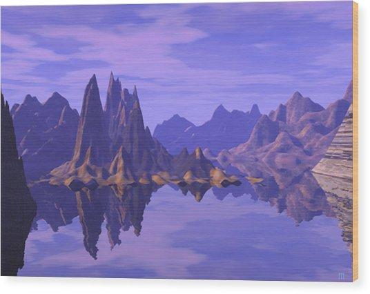 Summer Reflection  Wood Print