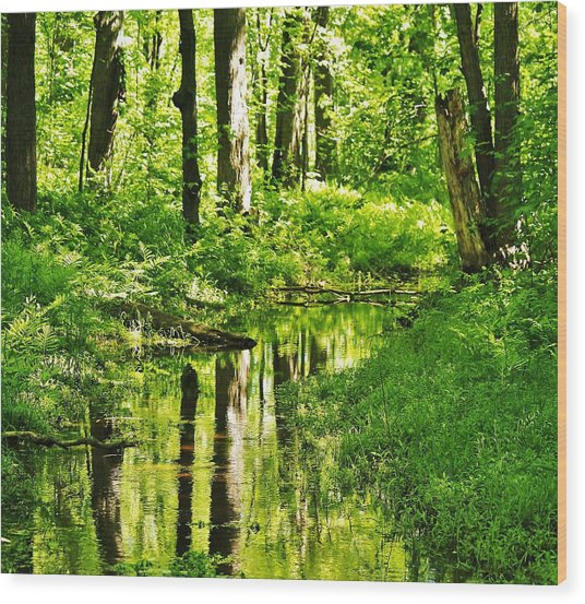 Summer Reflections Wood Print