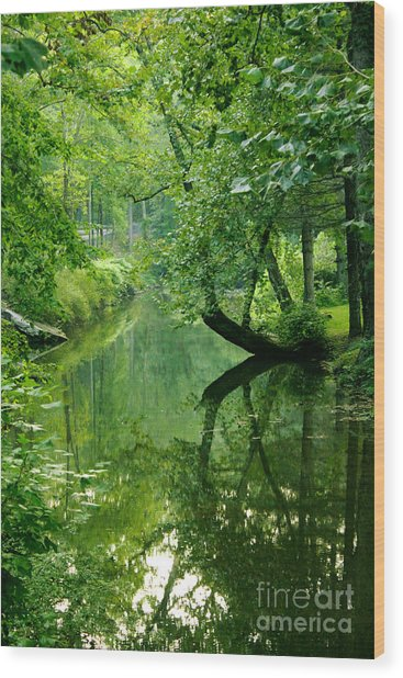 Summer Stream Wood Print