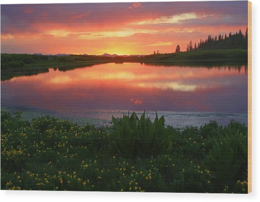 Summer Sunset Above Lake Creek. Wood Print