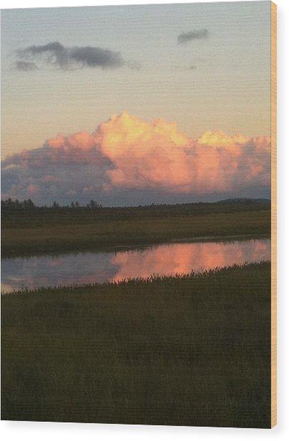 Summer Sunset Wood Print by Susan Pina