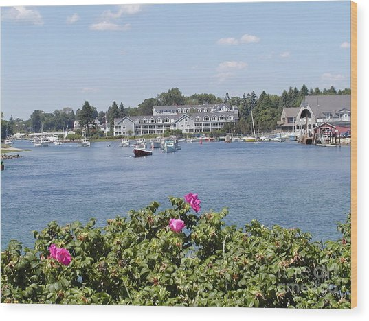 Summertime In Maine Wood Print