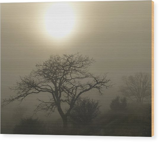 Sun And Fog Wood Print