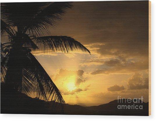 Sun Blast Wood Print