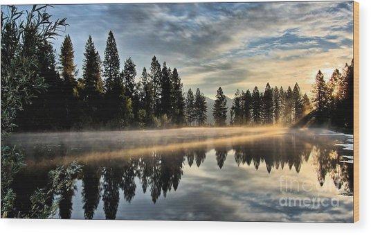 Sun Blessed Pond Wood Print