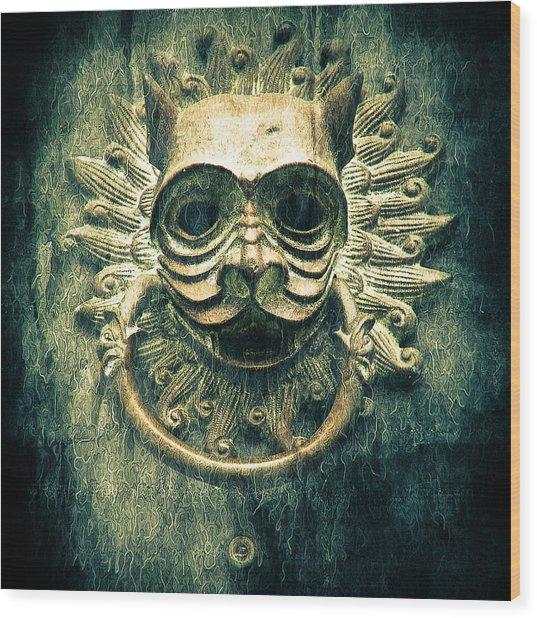 Sun Cat Door Knocker Wood Print