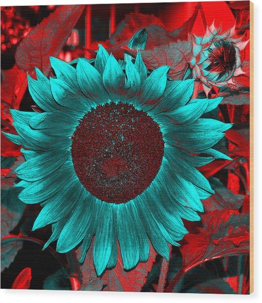 Sun Flower Reverse Wood Print